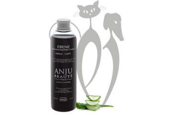 anju1